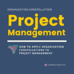 Systemic Organization Constellation Project Management Application Example