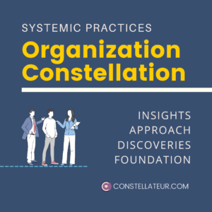 Organization Constellation Webinar with Tom Wittig, Constellateur