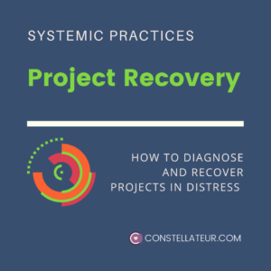 Project Recovery and Turn-around with Systemic Insight