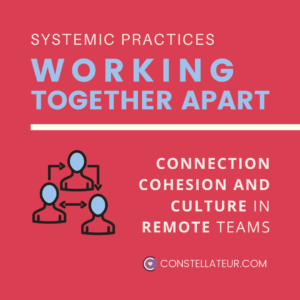 Remote Virtual Team Culture and Connection