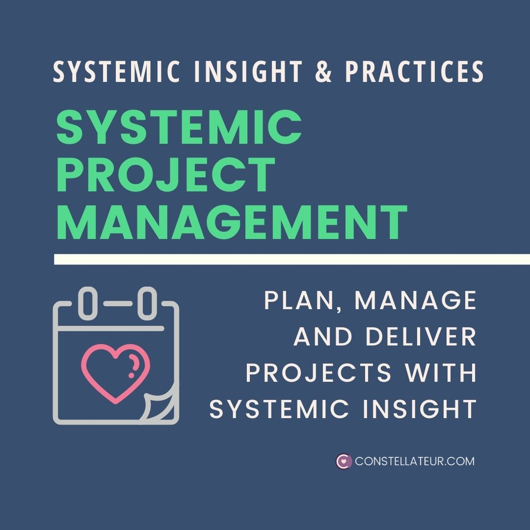 Systemic Project Management