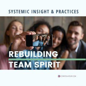Rebuilding Team Spirit. Webinar with Tom Wittig. Constellateur.