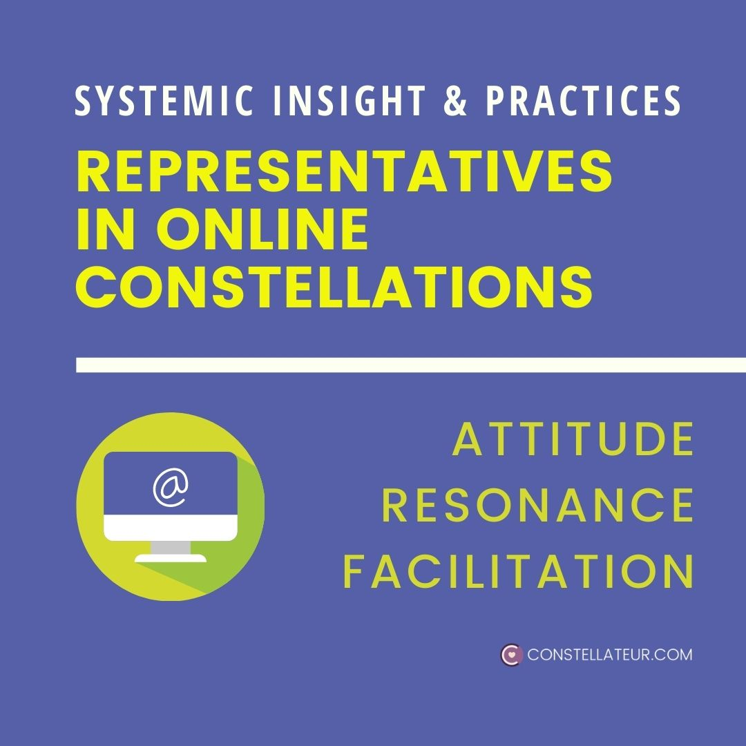 Representatives in Online Family and Organisation Constellation