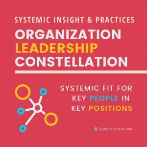 Organisation Leadership Constellation for Systemic Fit